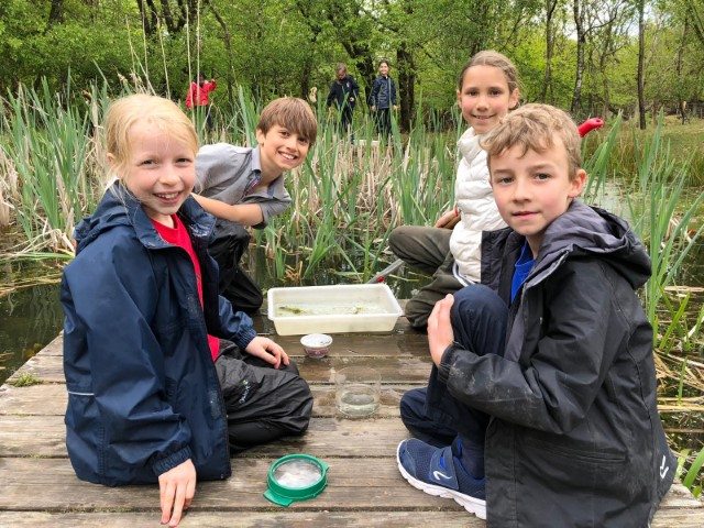 Year 4 Trip to Hindleap Warren