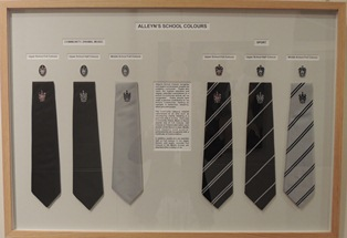 Colours ties and badges display
